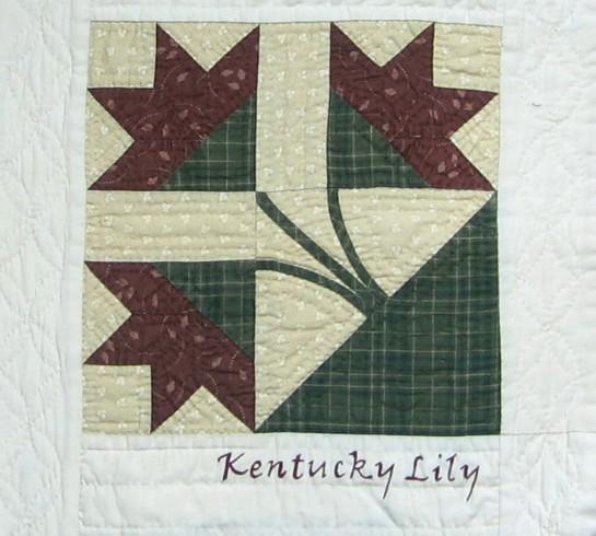 bom11 Kentucky Lily